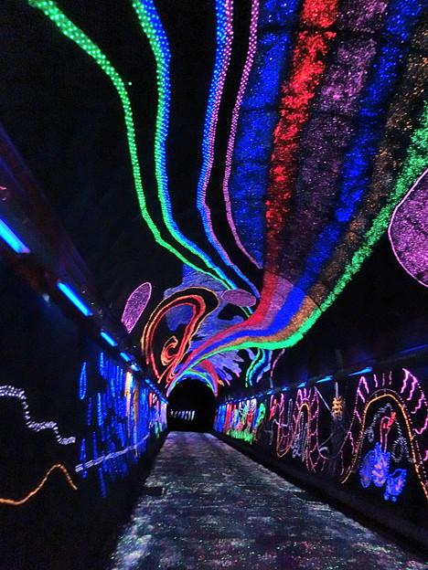 キララ夢トンネル3