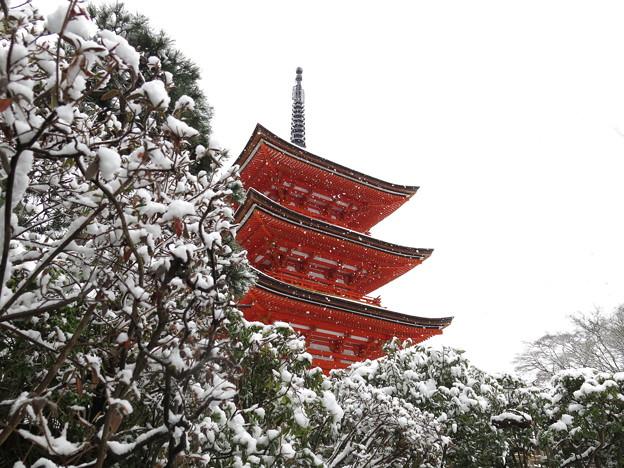 子安塔と雪