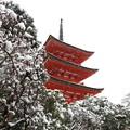 写真: 子安塔と雪