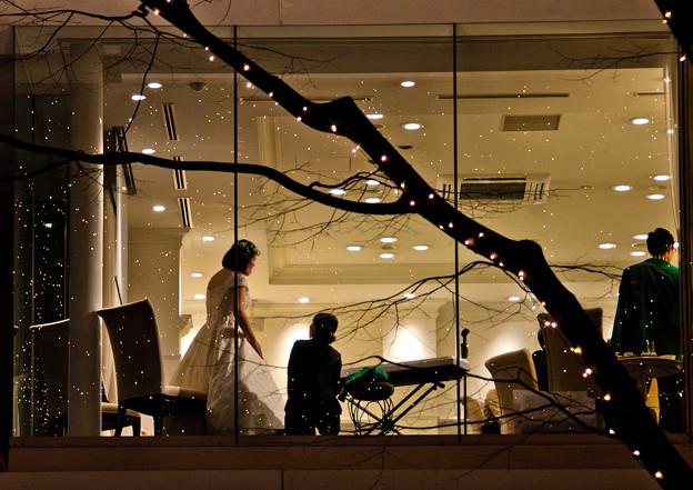 光の夜の結婚式