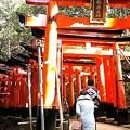 写真: 初詣・伏見稲荷2