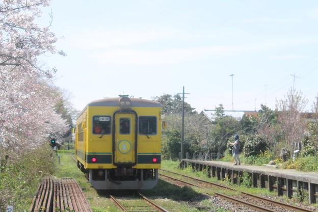 さよなら ムーミン列車