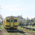 写真: さよなら ムーミン列車