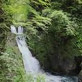 写真: 三ツ滝