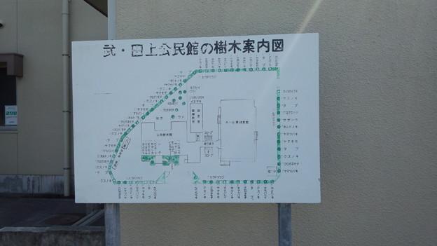 樹木案内図 武・田上公民館 鹿児島市