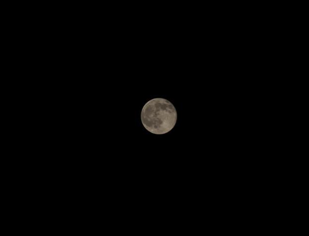 Photos: 月は見えるか
