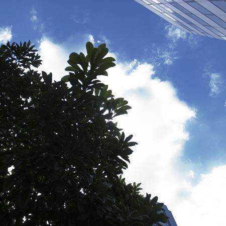 2011-01-19の空