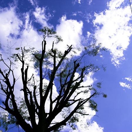 2011-04-25の空