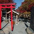 Photos: 嚴磐叢神社の鳥居と社