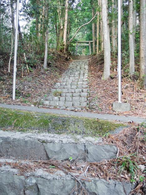 こだま石神社 参道