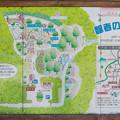 智者の丘公園 案内図