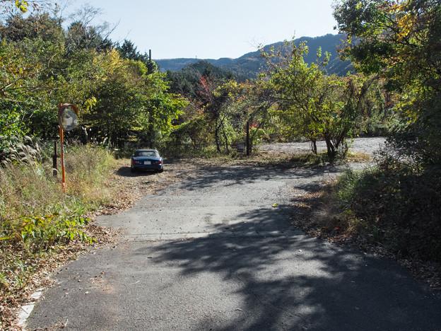 井川湖畔の道