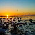 Photos: 夜明けの湖