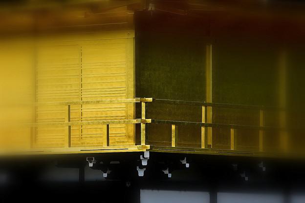 写真: 金閣寺のひかり