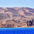 写真: 紅海の島