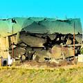 写真: 廃屋