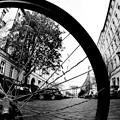 Photos: 車輪景色