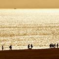 Photos: 逆光の海