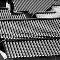 Photos: 日本の屋根