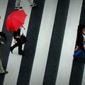 Photos: 赤い傘