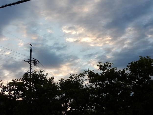 写真: DSCN1915  爽やかな朝