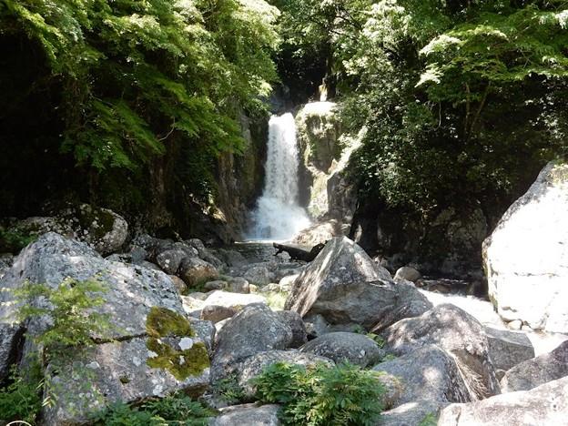 写真: 2016 鳴沢の滝