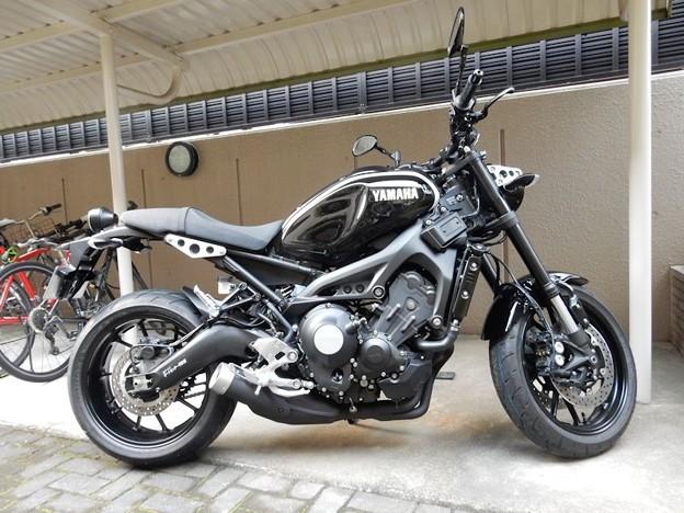 XSR900 (8)