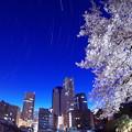 ランドマークと桜と星と