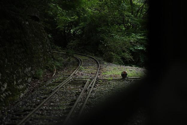 旧井川線跡