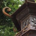 写真: 金灯籠