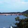 東名浜名湖S.A