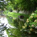 近江八幡の水堀に佇む船