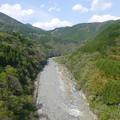 写真: P1020851