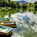 写真: 秋・色付き始めた菖蒲池