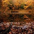 写真: 震生湖の秋模様