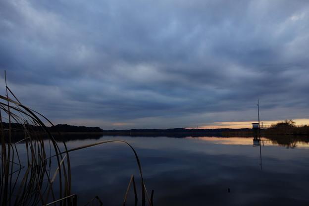 曇天の印旛沼