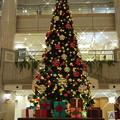 写真: 2016年のクリスマス