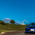 Photos: 茶畑と富士山