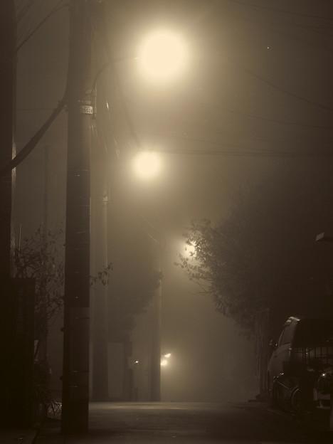 夜霧 2014.11.29