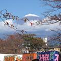 今日の富士山(2014/11/3)