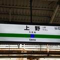 写真: 上野