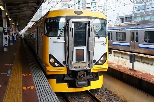 E257系500番台 特急新宿さざなみ