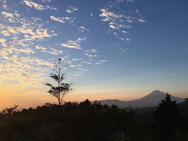 写真: 十国峠からの夕景