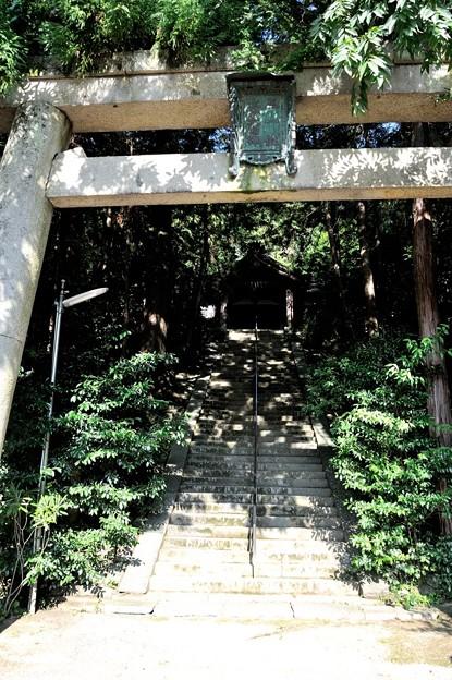 千早赤阪村 建水分神社 8/10 16:05