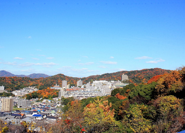 紅葉の白城