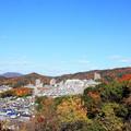 写真: 紅葉の白城
