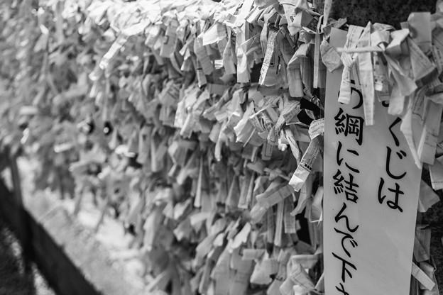 夏之荒木神社
