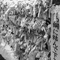 写真: 夏之荒木神社