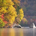 写真: 秋のひととき♪