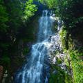 写真: 佐賀清水の滝